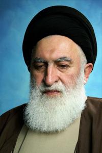 آیت الله سید محمد جواد علوی طباطبایی بروجردی و کربلایی کاظم